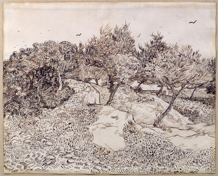Drawing With Lines And Dots : Van gogh's drawings u2013 anne percoco